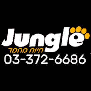 jungle1.1